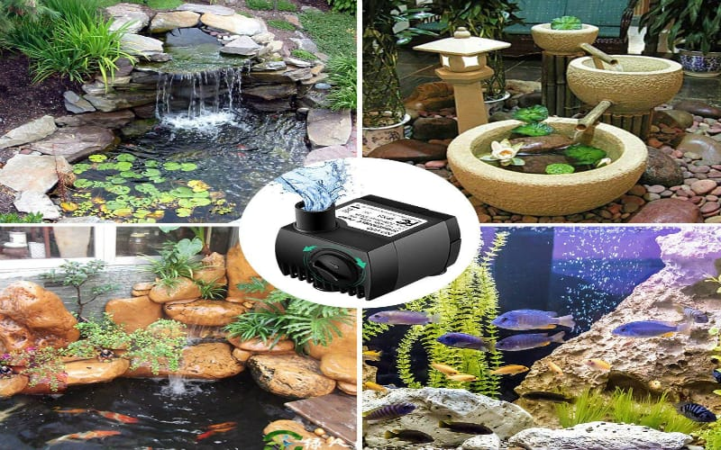 Top Six Water Pumps for Aquaponics