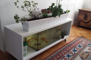 Decorative Indoor DIY Aquaponics System
